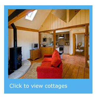 cottages with available dates in August