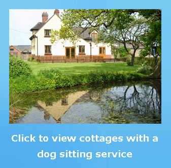 cottages with a dog sitting service for a fee