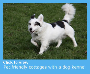 pet friendly cottages with a dogs kennel where your pet can stay for short periods
