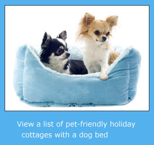 pet friendly cottages with a dog bed to rent for holidays